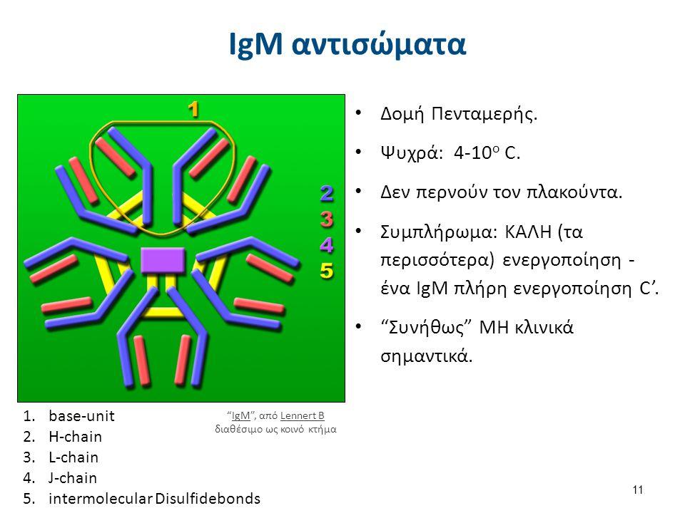 11 IgM αντισώματα Δομή Πενταμερής. Ψυχρά: 4-10 ο C. Δεν περνούν τον πλακούντα. Συμπλήρωμα: ΚΑΛΗ (τα περισσότερα) ενεργοποίηση - ένα IgM πλήρη ενεργοπο
