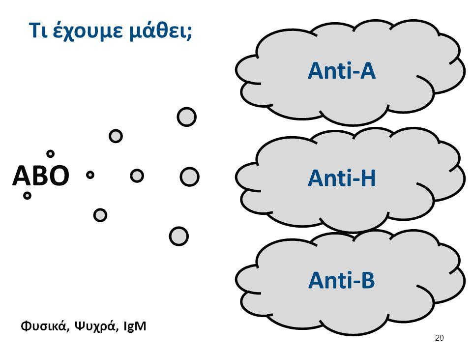 ΑΒΟ Anti-Α Anti-H Anti-B Φυσικά, Ψυχρά, IgM Τι έχουμε μάθει; 20