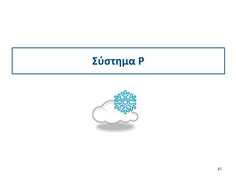 Σύστημα P 41