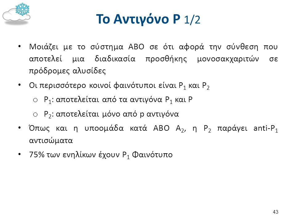 To Αντιγόνο Ρ 1/2 Μοιάζει με το σύστημα ABO σε ότι αφορά την σύνθεση που αποτελεί μια διαδικασία προσθήκης μονοσακχαριτών σε πρόδρομες αλυσίδες Οι περ
