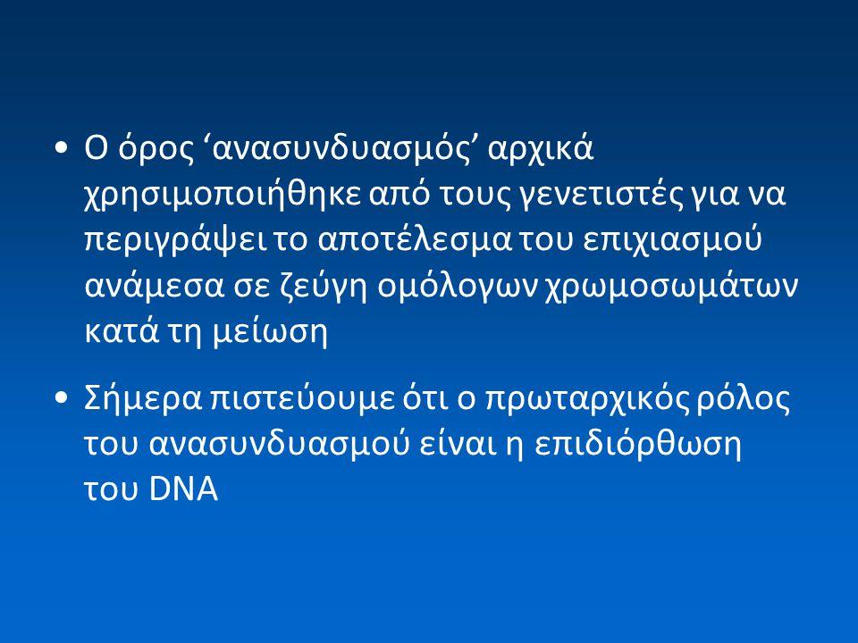 Ο όρος 'ανασυνδυασμός' αρχικά χρησιμοποιήθηκε από τους γενετιστές για να περιγράψει το αποτέλεσμα του επιχιασμού ανάμεσα σε ζεύγη ομόλογων χρωμοσωμάτων κατά τη μείωση Σήμερα πιστεύουμε ότι ο πρωταρχικός ρόλος του ανασυνδυασμού είναι η επιδιόρθωση του DNA