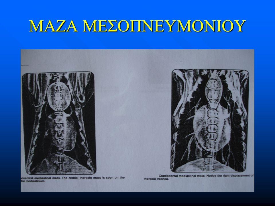 ΜΑΖΑ ΜΕΣΟΠΝΕΥΜΟΝΙΟΥ