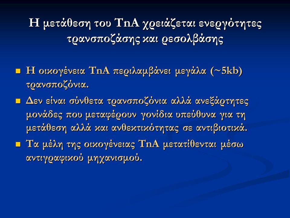 Η μετάθεση του TnA χρειάζεται ενεργότητες τρανσποζάσης και ρεσολβάσης Η οικογένεια TnA περιλαμβάνει μεγάλα (~5kb) τρανσποζόνια. Η οικογένεια TnA περιλ