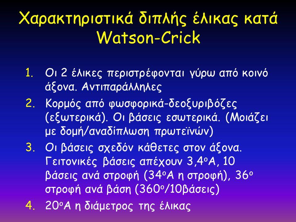 Χαρακτηριστικά διπλής έλικας κατά Watson-Crick 1.Οι 2 έλικες περιστρέφονται γύρω από κοινό άξονα. Αντιπαράλληλες 2.Κορμός από φωσφορικά-δεοξυριβόζες (