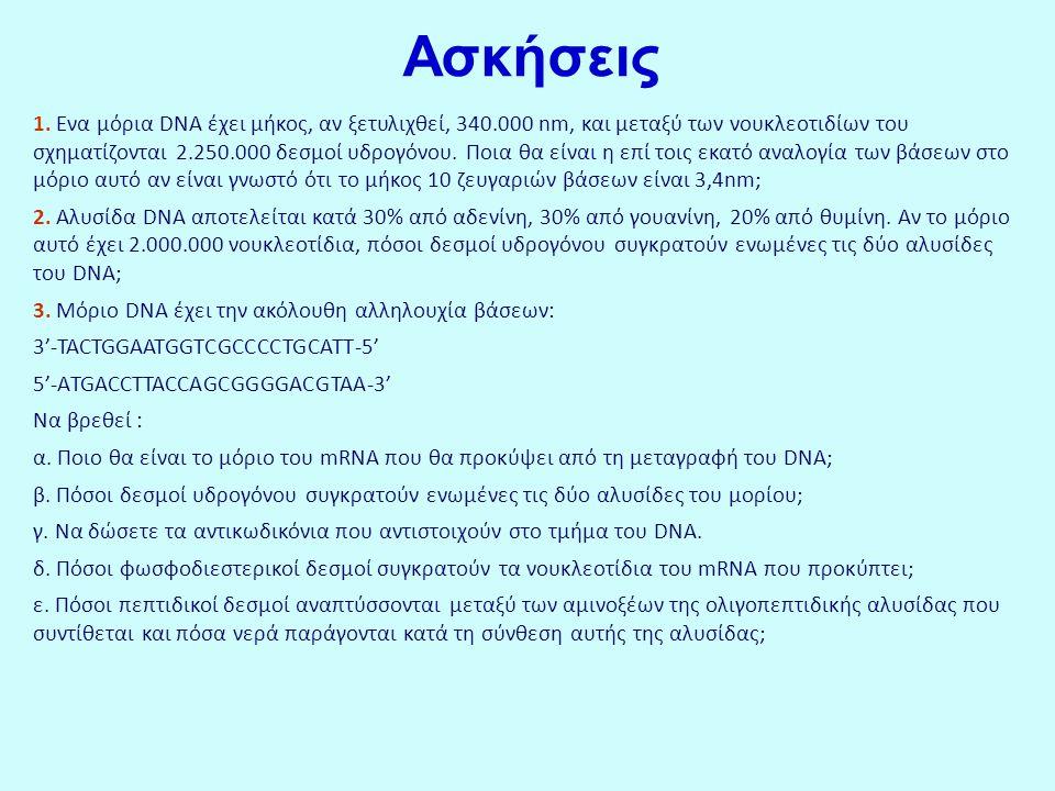 Ασκήσεις 1. Ενα μόρια DNA έχει μήκος, αν ξετυλιχθεί, 340.000 nm, και μεταξύ των νουκλεοτιδίων του σχηματίζονται 2.250.000 δεσμοί υδρογόνου. Ποια θα εί