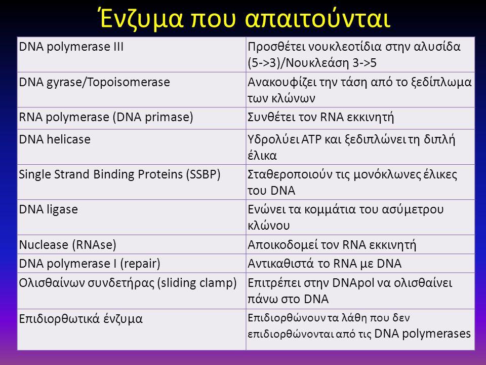 Ένζυμα που απαιτούνται DNA polymerase IIIΠροσθέτει νουκλεοτίδια στην αλυσίδα (5->3)/Νουκλεάση 3->5 DNA gyrase/TopoisomeraseΑνακουφίζει την τάση από το