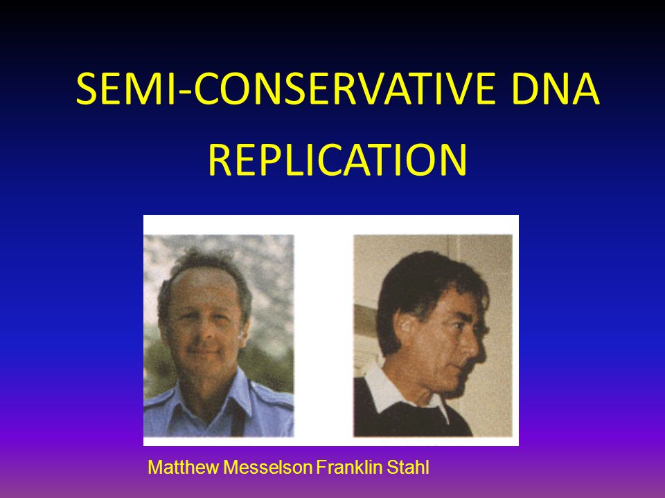 Matthew Messelson Franklin Stahl SEMI-CONSERVATIVE DNA REPLICATION