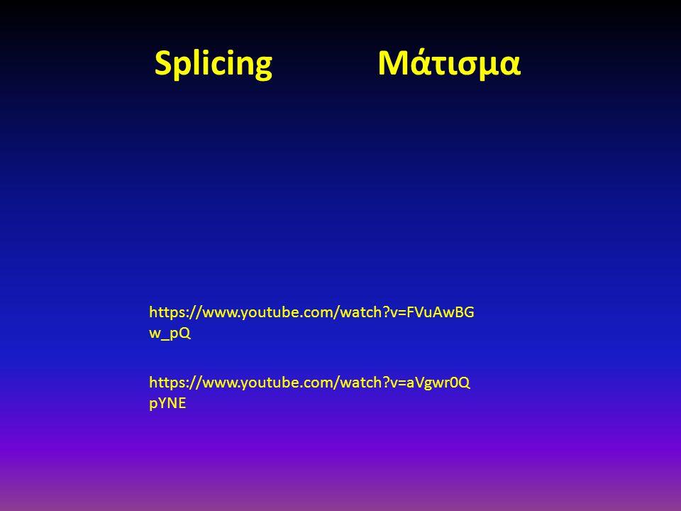 https://www.youtube.com/watch?v=FVuAwBG w_pQ https://www.youtube.com/watch?v=aVgwr0Q pYNE Splicing Μάτισμα