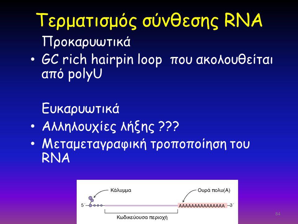 84 Τερματισμός σύνθεσης RNA Προκαρυωτικά GC rich hairpin loop που ακολουθείται από polyU Ευκαρυωτικά Αλληλουχίες λήξης ??? Μεταμεταγραφική τροποποίηση