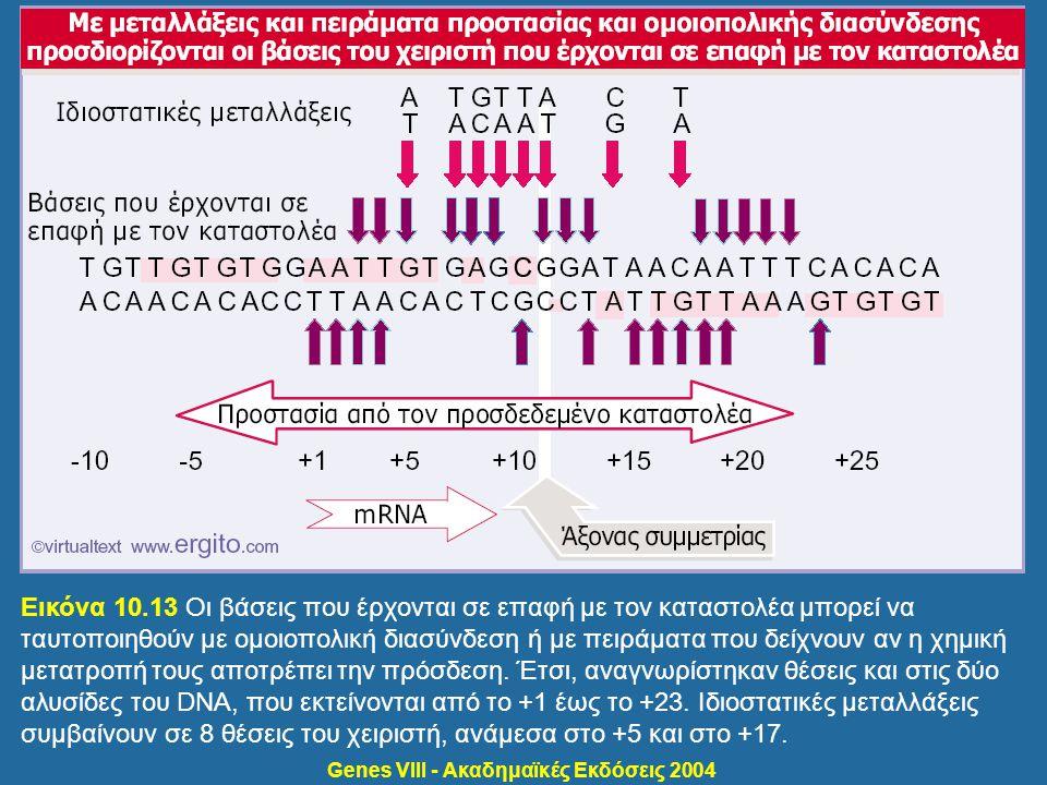 Εικόνα 10.13 Οι βάσεις που έρχονται σε επαφή με τον καταστολέα μπορεί να ταυτοποιηθούν με ομοιοπολική διασύνδεση ή με πειράματα που δείχνουν αν η χημι