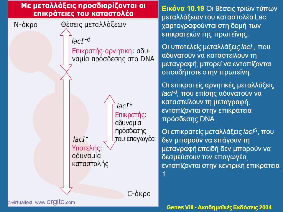 Genes VIII - Ακαδημαϊκές Εκδόσεις 2004 Εικόνα 10.19 Οι θέσεις τριών τύπων μεταλλάξεων του καταστολέα Lac χαρτογραφούνται στη δομή των επικρατειών της