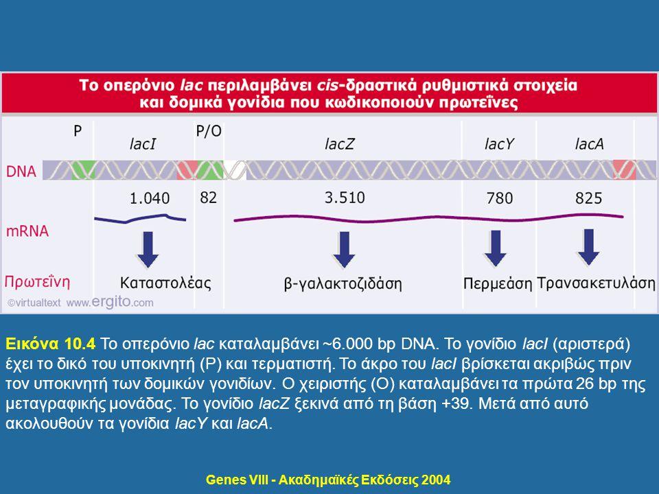 Genes VIII - Ακαδημαϊκές Εκδόσεις 2004 Εικόνα 10.4 Το οπερόνιο lac καταλαμβάνει ~6.000 bp DNA. Το γονίδιο lacI (αριστερά) έχει το δικό του υποκινητή (