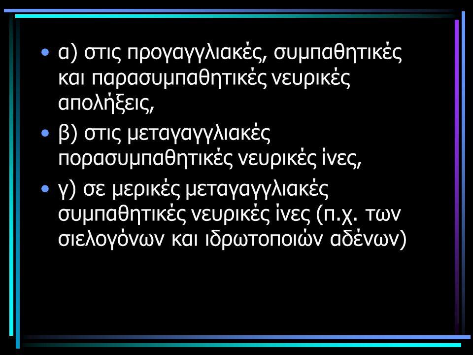 α) στις προγαγγλιακές, συμπαθητικές και παρασυμπαθητικές νευρικές απολήξεις, β) στις μεταγαγγλιακές πορασυμπαθητικές νευρικές ίνες, γ) σε μερικές μετα