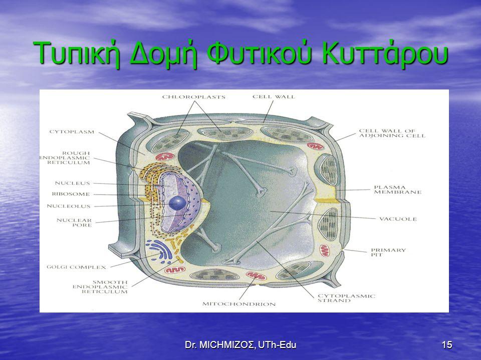 Dr. ΜΙCHΜΙΖΟΣ, UTh-Edu15 Τυπική Δομή Φυτικού Κυττάρου
