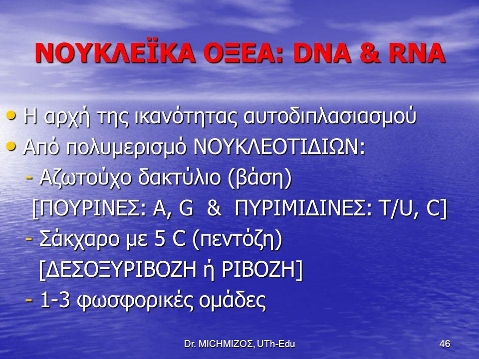 Dr. ΜΙCHΜΙΖΟΣ, UTh-Edu46 ΝΟΥΚΛΕΪΚΑ ΟΞΕΑ: DNA & RNA Η αρχή της ικανότητας αυτοδιπλασιασμού Η αρχή της ικανότητας αυτοδιπλασιασμού Από πολυμερισμό ΝΟΥΚΛ