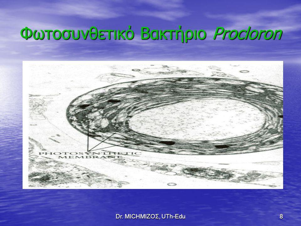 Dr. ΜΙCHΜΙΖΟΣ, UTh-Edu8 Φωτοσυνθετικό Βακτήριο Procloron