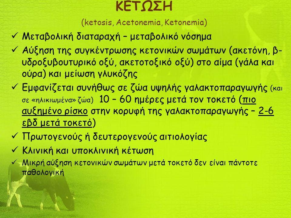 ΚΕΤΩΣΗ (ketosis, Acetonemia, Ketonemia) Μεταβολική διαταραχή – μεταβολικό νόσημα Αύξηση της συγκέντρωσης κετονικών σωμάτων (ακετόνη, β- υδροξυβουτυρικ