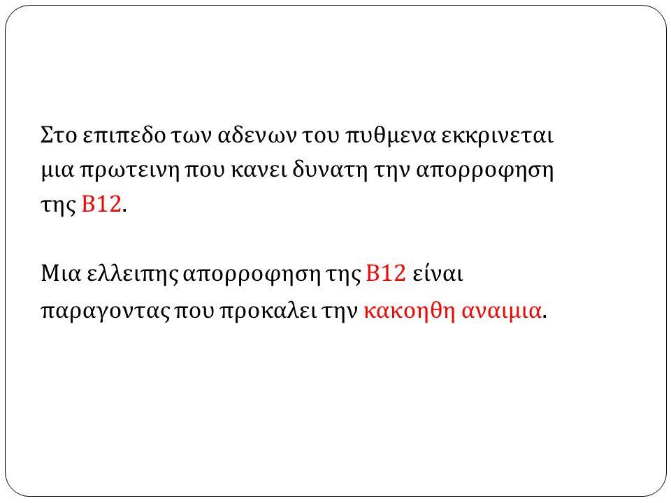 Στο επιπεδο των αδενων του πυθμενα εκκρινεται μια πρωτεινη που κανει δυνατη την απορροφηση της Β 12. Μια ελλειπης απορροφηση της Β 12 είναι παραγοντας