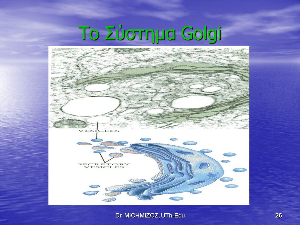 Dr. ΜΙCHΜΙΖΟΣ, UTh-Edu26 Το Σύστημα Golgi