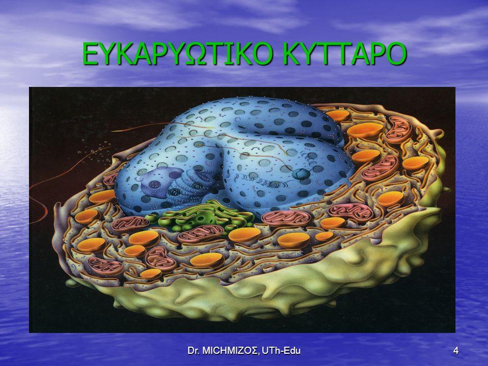 Dr. ΜΙCHΜΙΖΟΣ, UTh-Edu4 ΕΥΚΑΡΥΩΤΙΚΟ ΚΥΤΤΑΡΟ