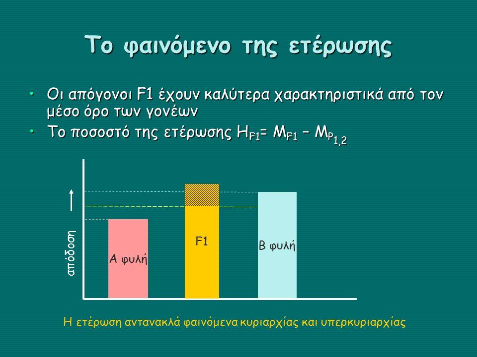 Το φαινόμενο της ετέρωσης Οι απόγονοι F1 έχουν καλύτερα χαρακτηριστικά από τον μέσο όρο των γονέωνΟι απόγονοι F1 έχουν καλύτερα χαρακτηριστικά από τον μέσο όρο των γονέων Το ποσοστό της ετέρωσης H F1 = Μ F1 – Μ P 1,2Το ποσοστό της ετέρωσης H F1 = Μ F1 – Μ P 1,2 F1 Β φυλή Α φυλή απόδοση F1 Η ετέρωση αντανακλά φαινόμενα κυριαρχίας και υπερκυριαρχίας