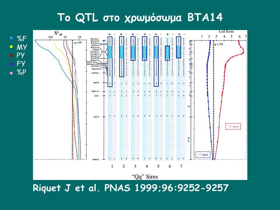 Το QTL στο χρωμόσωμα ΒΤΑ14 Riquet J et al. PNAS 1999;96:9252-9257 %F MY PY FY %P