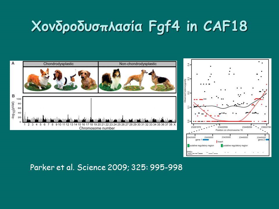 Χονδροδυσπλασία Fgf4 in CAF18 Parker et al. Science 2009; 325: 995-998
