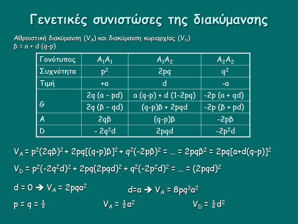 Γενετικές συνιστώσες της διακύμανσης Αθροιστική διακύμανση (V A ) και διακύμανση κυριαρχίας (V D ) β = a + d (q-p) ΓονότυποςΑ1Α1Α1Α1 Α1Α2Α1Α2 Α2Α2Α2Α2 Συχνότηταp2p2 2pqq2q2 Τιμή+ad-a G 2q (a – pd)a (q-p) + d (1-2pq)-2p (a + qd) 2q (β – qd)(q-p)β + 2pqd-2p (β + pd) A2qβ(q-p)β-2pβ D- 2q 2 d2pqd-2p 2 d V A = p 2 (2qβ) 2 + 2pq[(q-p)β] 2 + q 2 (-2pβ) 2 = … = 2pqβ 2 = 2pq[a+d(q-p)] 2 V D = p 2 (-2q 2 d) 2 + 2pq(2pqd) 2 + q 2 (-2p 2 d) 2 = … = (2pqd) 2 d = 0  V A = 2pqa 2 d=a  V A = 8pq 3 a 2 p = q = ½ V A = ½a 2 V D = ¼d 2