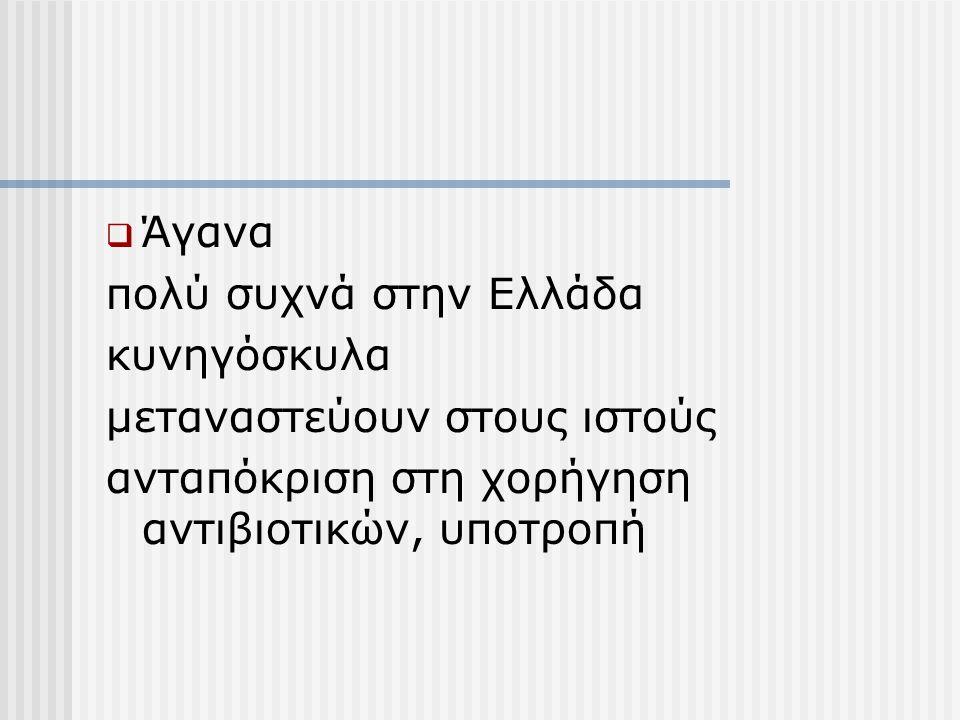  Άγανα πολύ συχνά στην Ελλάδα κυνηγόσκυλα μεταναστεύουν στους ιστούς ανταπόκριση στη χορήγηση αντιβιοτικών, υποτροπή