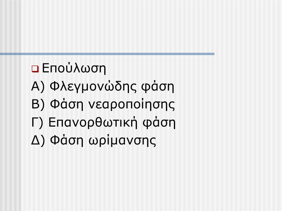  Επούλωση Α) Φλεγμονώδης φάση Β) Φάση νεαροποίησης Γ) Επανορθωτική φάση Δ) Φάση ωρίμανσης