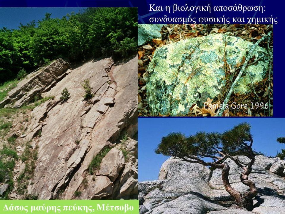 Χημική αποσάθρωση: Χημική αλλοίωση πρωτογενών ορυκτών Έλλειψη χημικής ισορροπίας νερού-ορυκτού Η ικανότητα του νερού να διαλυτοποιεί ορυκτά φαίνεται παρακάτω: Νερό βροχής (σε mmol L -1 ) Νερό ποταμών Αύξηση Na + K+K+ Mg 2+ Ca 2+ Cl - HCO 3 - SO 4 2- 0,086 0,273 0,008 0,067 0,011 0,1715 0,002 0,3819 0,107 0,222 0,002 0,96480 0,006 0,1220 Η αύξηση αυτή προέρχεται από ιόντα που πριν ανήκαν σε ορυκτά.