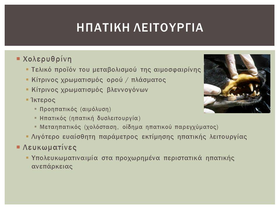  Χολερυθρίνη  Τελικό προϊόν του μεταβολισμού της αιμοσφαιρίνης  Κίτρινος χρωματισμός ορού / πλάσματος  Κίτρινος χρωματισμός βλεννογόνων  Ίκτερος