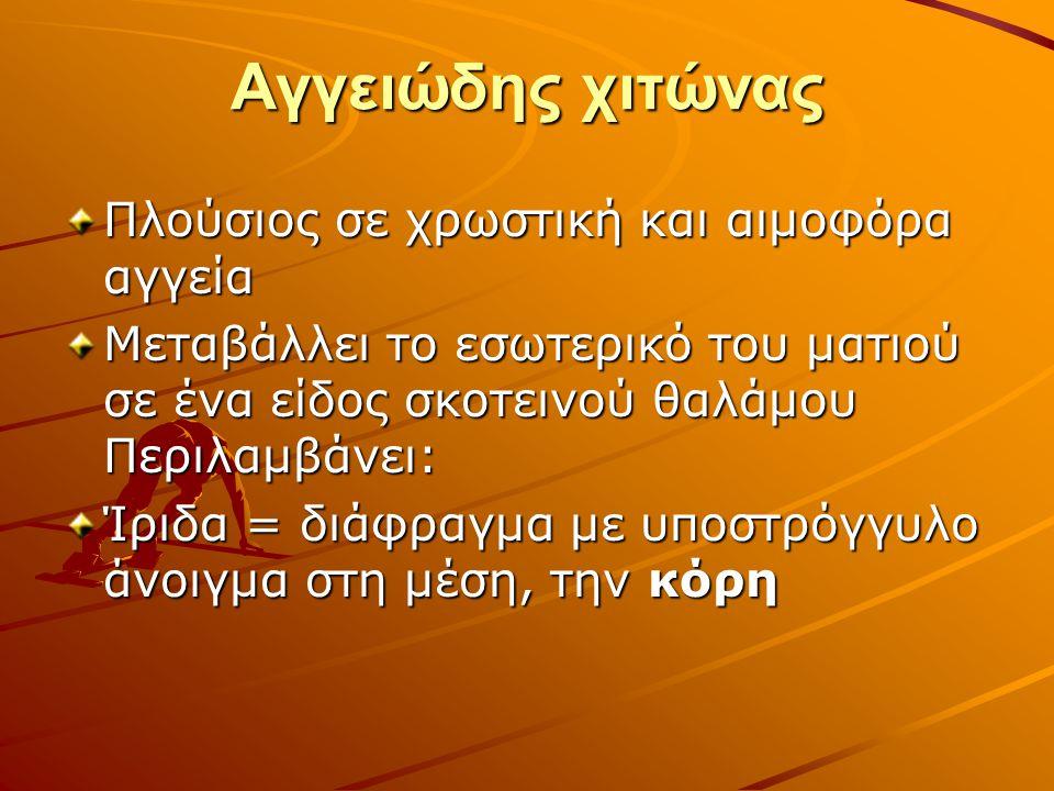 ΑΛΛΕΣ ΒΛΑΒΕΣ Αλφισμός (απουσία χρωστικής ουσίας, διαθλαστικές ανωμαλίες κλπ) Νυσταγμός (επαναλαμβανόμενη ακούσια ρυθμική ταλάντωση των ματιών) Γλαύκωμα (αύξηση ενδοφθάλμιας πίεσης, διαταραχή οπτικού πεδίου, βλάβη οπτικής θηλής) Καταρράχτης (θόλωση κρυσταλλοειδούς φακού) Αμαύρωση του Leber (σημαντικά μειωμένα τα αντανακλαστικά της κόρης)
