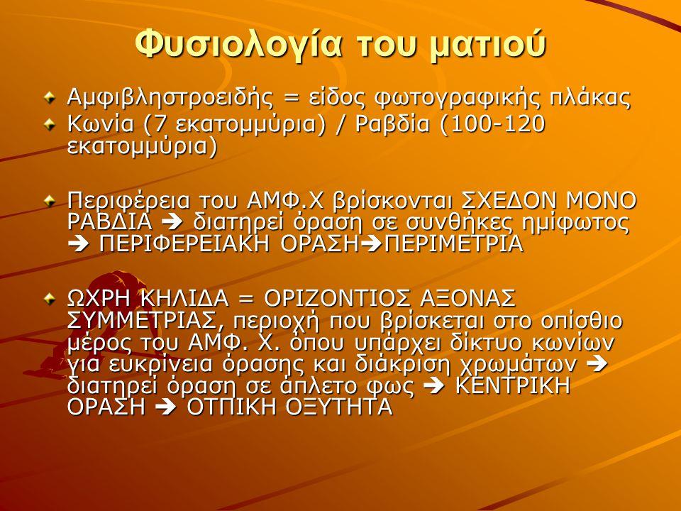 Φυσιολογία του ματιού Αμφιβληστροειδής = είδος φωτογραφικής πλάκας Κωνία (7 εκατομμύρια) / Ραβδία (100-120 εκατομμύρια) Περιφέρεια του ΑΜΦ.Χ βρίσκονται ΣΧΕΔΟΝ ΜΟΝΟ ΡΑΒΔΙΑ  διατηρεί όραση σε συνθήκες ημίφωτος  ΠΕΡΙΦΕΡΕΙΑΚΗ ΟΡΑΣΗ  ΠΕΡΙΜΕΤΡΙΑ ΩΧΡΗ ΚΗΛΙΔΑ = ΟΡΙΖΟΝΤΙΟΣ ΑΞΟΝΑΣ ΣΥΜΜΕΤΡΙΑΣ, περιοχή που βρίσκεται στο οπίσθιο μέρος του ΑΜΦ.
