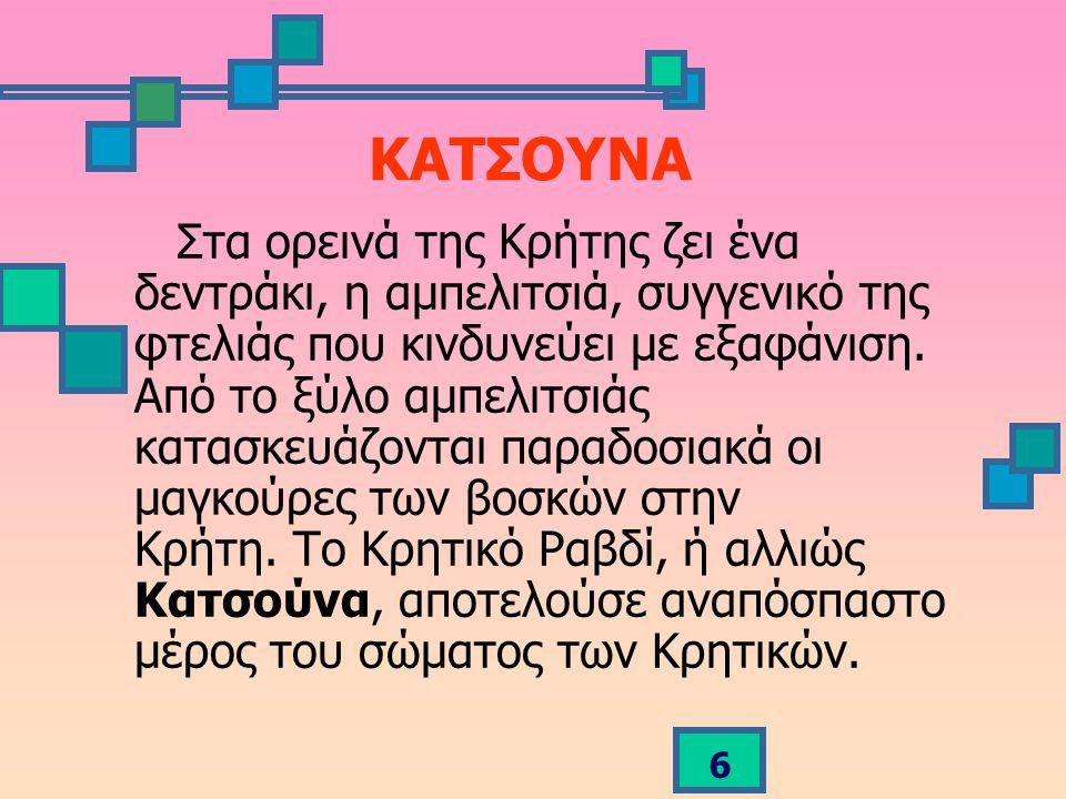 6 ΚΑΤΣΟΥΝΑ Στα ορεινά της Κρήτης ζει ένα δεντράκι, η αμπελιτσιά, συγγενικό της φτελιάς που κινδυνεύει με εξαφάνιση.