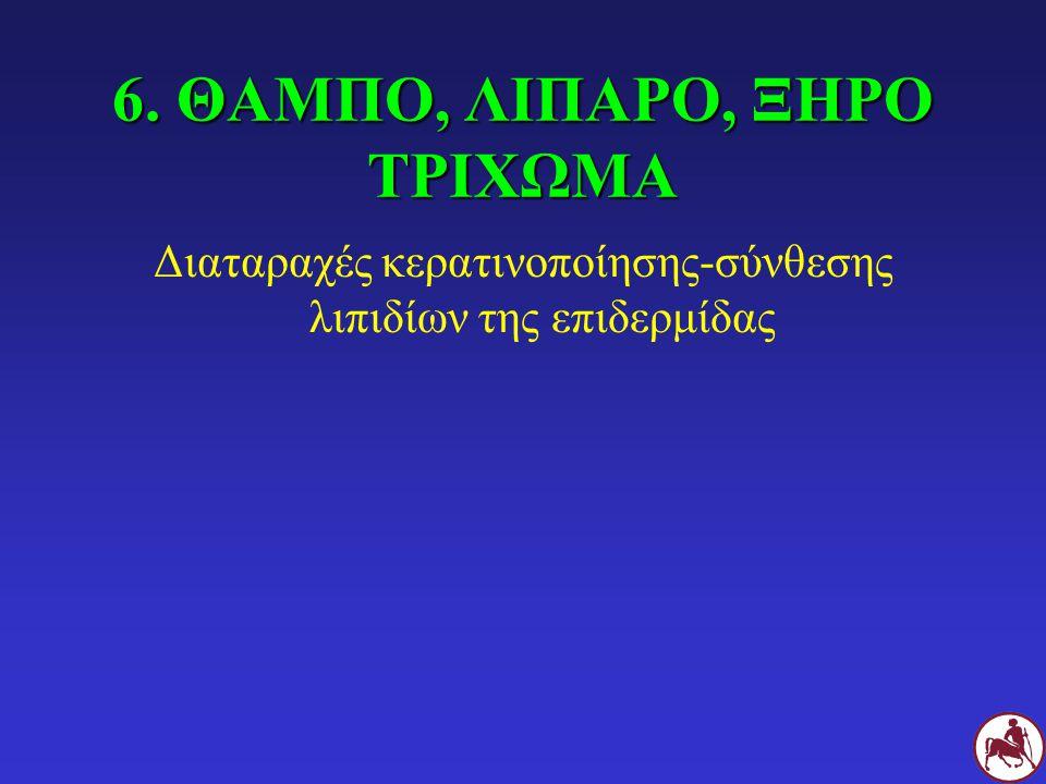 6. ΘΑΜΠΟ, ΛΙΠΑΡΟ, ΞΗΡΟ ΤΡΙΧΩΜΑ Διαταραχές κερατινοποίησης-σύνθεσης λιπιδίων της επιδερμίδας