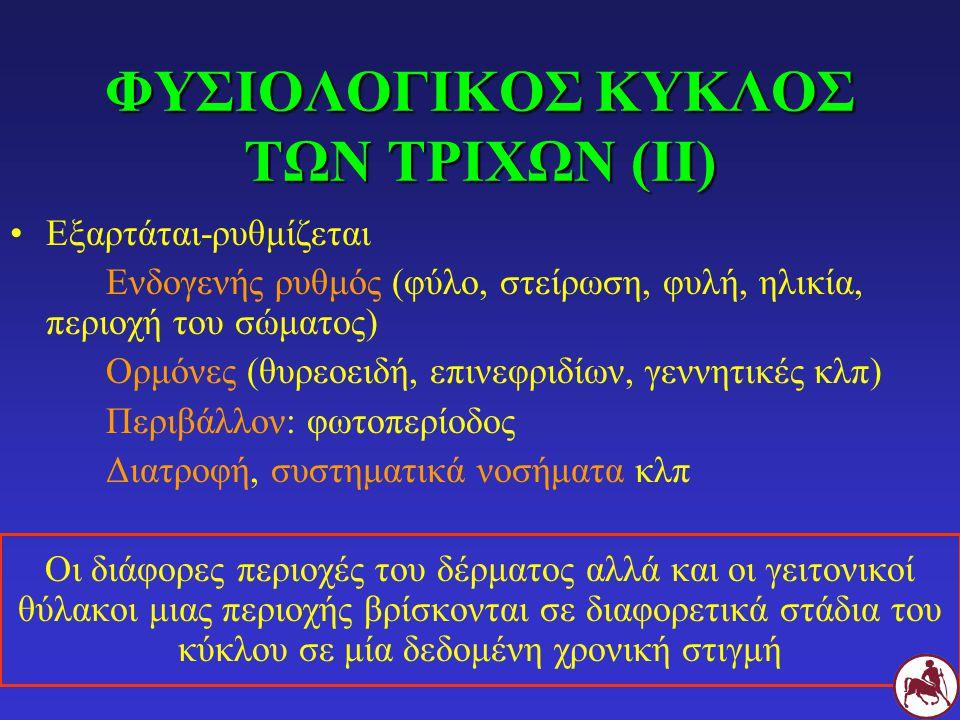 Εξαρτάται-ρυθμίζεται Ενδογενής ρυθμός (φύλο, στείρωση, φυλή, ηλικία, περιοχή του σώματος) Ορμόνες (θυρεοειδή, επινεφριδίων, γεννητικές κλπ) Περιβάλλον