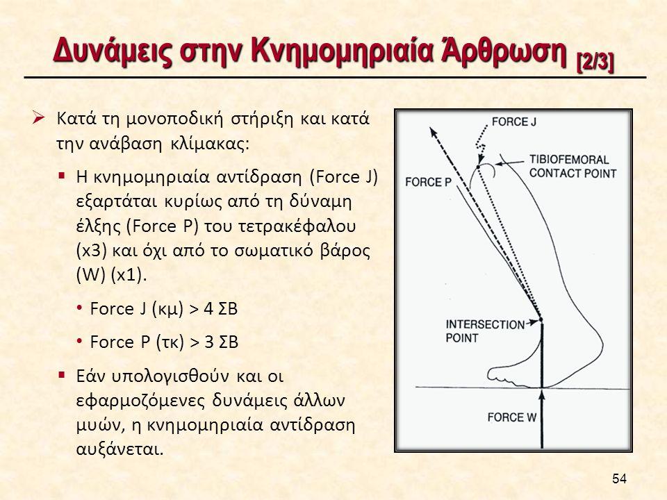 Δυνάμεις στην Κνημομηριαία Άρθρωση [2/3] 54  Kατά τη μονοποδική στήριξη και κατά την ανάβαση κλίμακας:  H κνημομηριαία αντίδραση (Force J) εξαρτάται κυρίως από τη δύναμη έλξης (Force P) του τετρακέφαλου (x3) και όχι από το σωματικό βάρος (W) (x1).