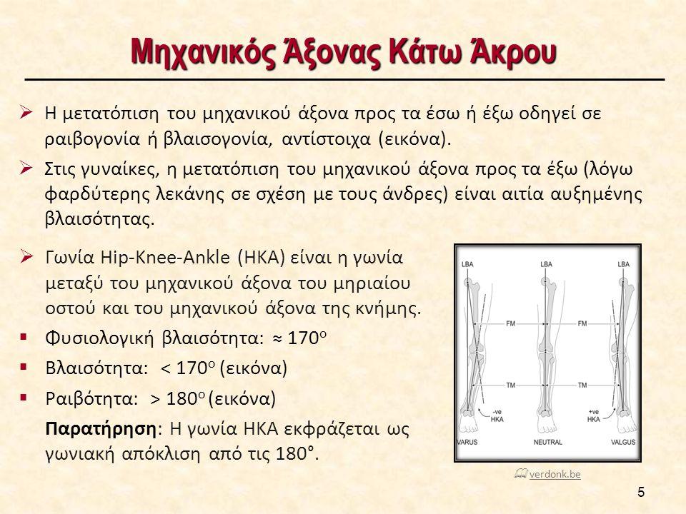 Μηχανικός Άξονας Κάτω Άκρου  Γωνία Hip-Knee-Ankle (HKA) είναι η γωνία μεταξύ του μηχανικού άξονα του μηριαίου οστού και του μηχανικού άξονα της κνήμης.