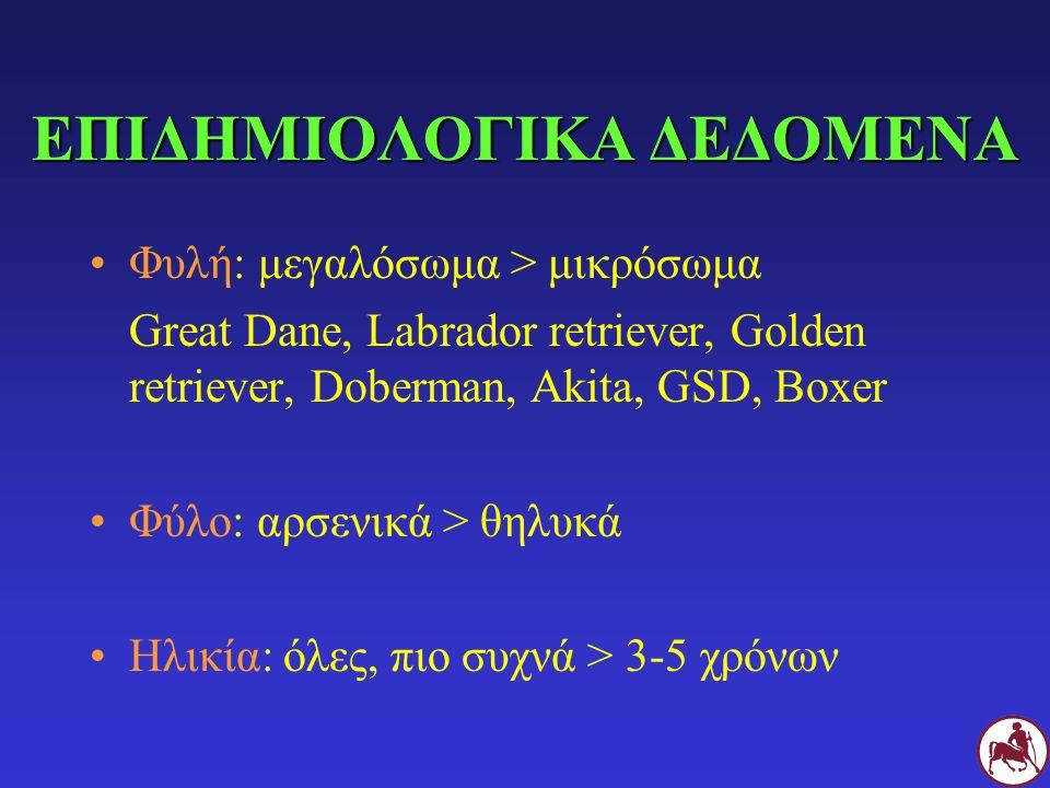 ΕΠΙΔΗΜΙΟΛΟΓΙΚΑ ΔΕΔΟΜΕΝΑ Φυλή: μεγαλόσωμα > μικρόσωμα Great Dane, Labrador retriever, Golden retriever, Doberman, Akita, GSD, Boxer Φύλο: αρσενικά > θη