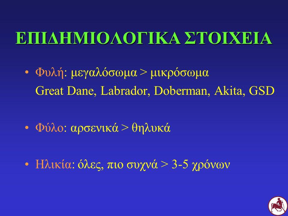 ΕΠΙΔΗΜΙΟΛΟΓΙΚΑ ΣΤΟΙΧΕΙΑ Φυλή: μεγαλόσωμα > μικρόσωμα Great Dane, Labrador, Doberman, Akita, GSD Φύλο: αρσενικά > θηλυκά Ηλικία: όλες, πιο συχνά > 3-5