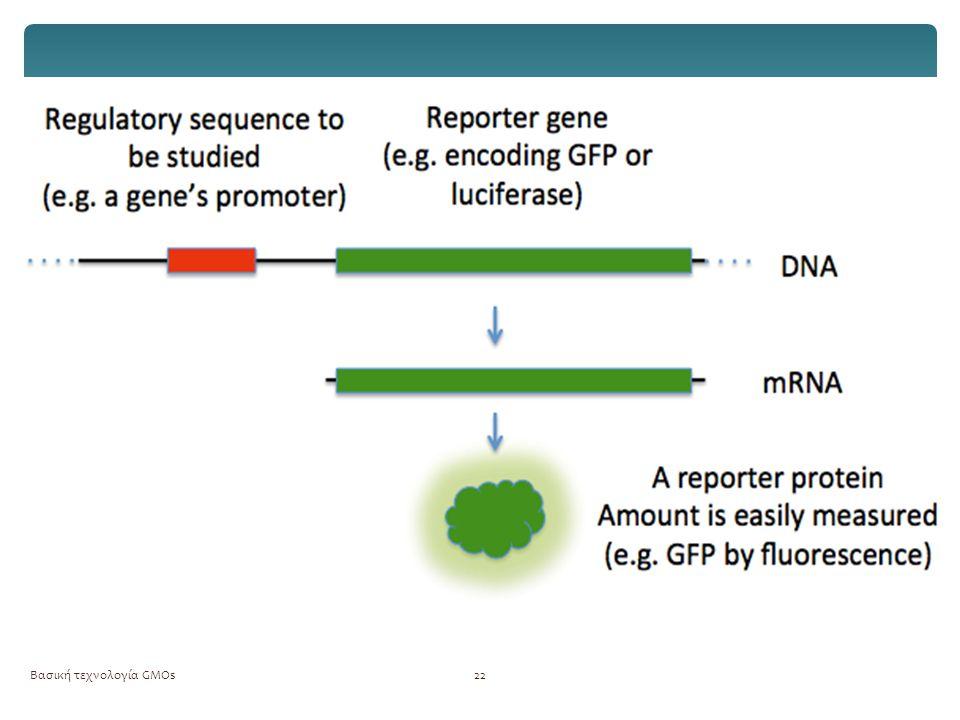 Βασική τεχνολογία GMOs23