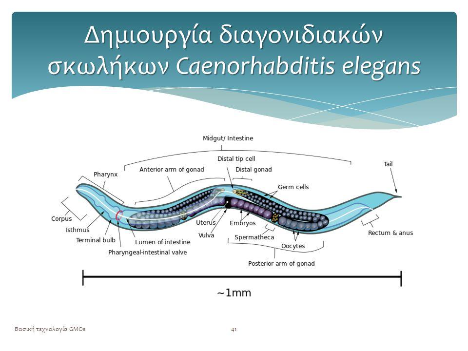 Βασική τεχνολογία GMOs42