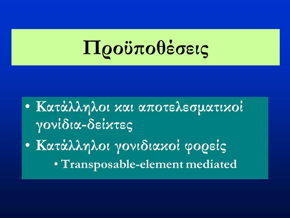 Γενετικός μετασχηματισμός Drosophilids