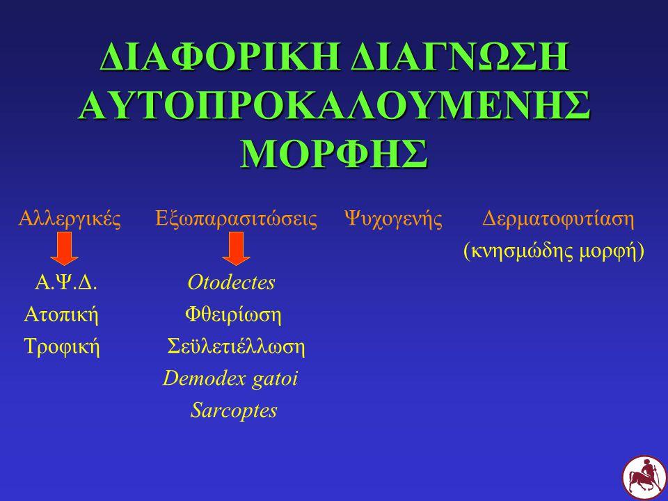ΔΙΑΦΟΡΙΚΗ ΔΙΑΓΝΩΣΗ ΑΥΤΟΠΡΟΚΑΛΟΥΜΕΝΗΣ ΜΟΡΦΗΣ Αλλεργικές Εξωπαρασιτώσεις Ψυχογενής Δερματοφυτίαση (κνησμώδης μορφή) Α.Ψ.Δ. Otodectes Ατοπική Φθειρίωση Τ