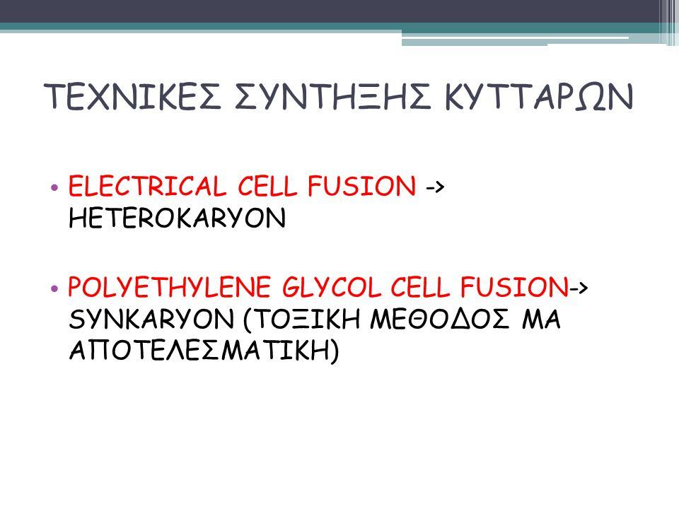 ΤΕΧΝΙΚΕΣ ΣΥΝΤΗΞΗΣ ΚΥΤΤΑΡΩΝ ELECTRICAL CELL FUSION -> HETEROKARYON POLYETHYLENE GLYCOL CELL FUSION-> SYNKARYON (ΤΟΞΙΚΗ ΜΕΘΟΔΟΣ ΜΑ ΑΠΟΤΕΛΕΣΜΑΤΙΚΗ)