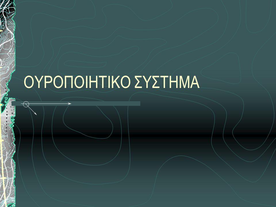 Απόφραξη από εξωαυλικά αίτια: Απομάκρυνση αιτίου α) σε κατάγματα πυέλου ανάταξη- αντιμετώπιση κακώσεων ουρήθρας β) σε κάταγμα πεϊκού οστού: ανάταξη με εξωτερικούς χειρισμούς, ουροκαθετήρας για 7 ημ., ή οσχεϊκή ουρηθροστομία γ) σε κήλες: χειρ.
