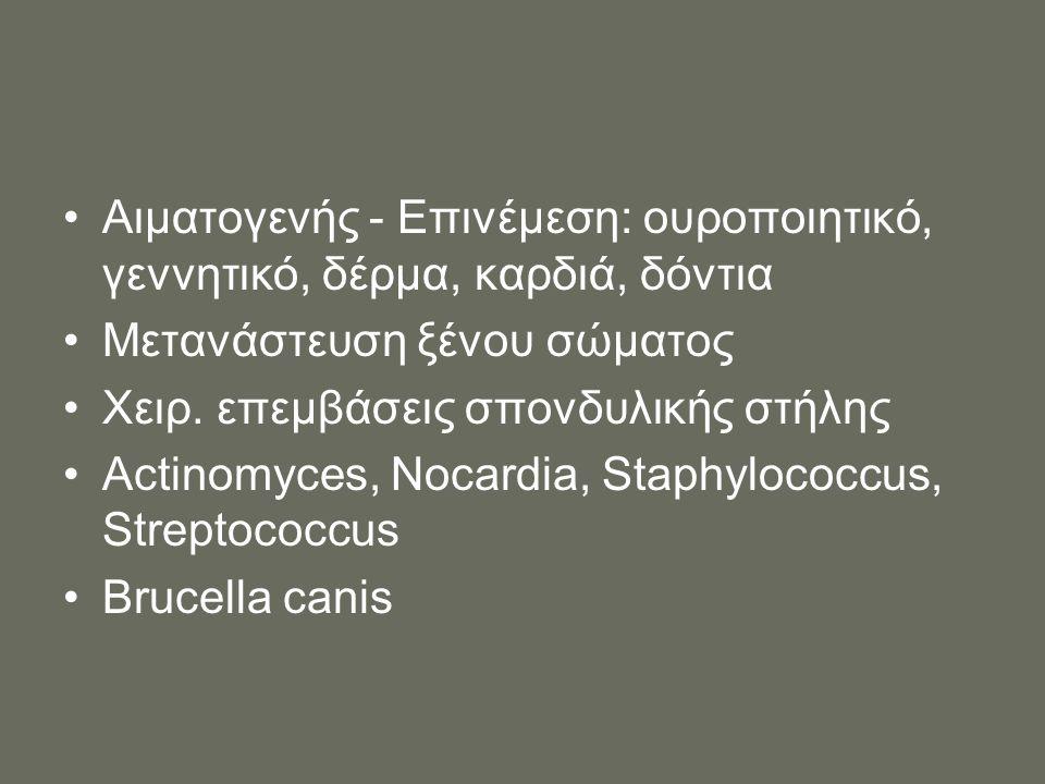 Αιματογενής - Επινέμεση: ουροποιητικό, γεννητικό, δέρμα, καρδιά, δόντια Μετανάστευση ξένου σώματος Χειρ. επεμβάσεις σπονδυλικής στήλης Actinomyces, No