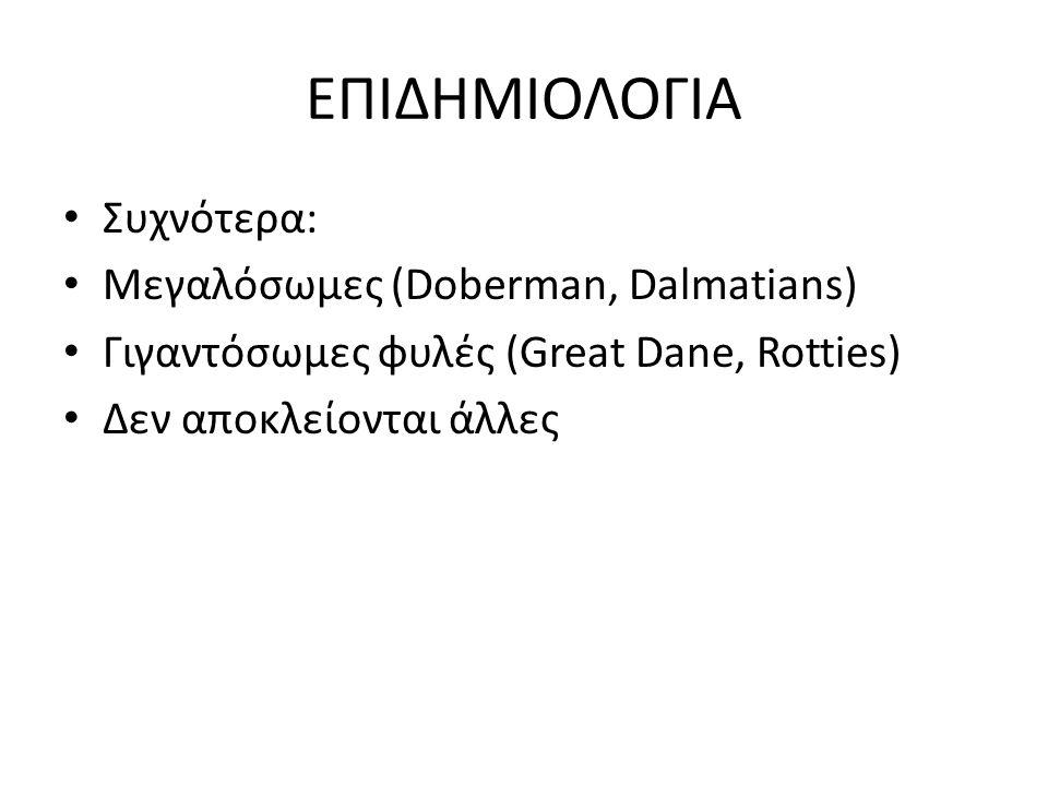ΕΠΙΔΗΜΙΟΛΟΓΙΑ Συχνότερα: Μεγαλόσωμες (Doberman, Dalmatians) Γιγαντόσωμες φυλές (Great Dane, Rotties) Δεν αποκλείονται άλλες
