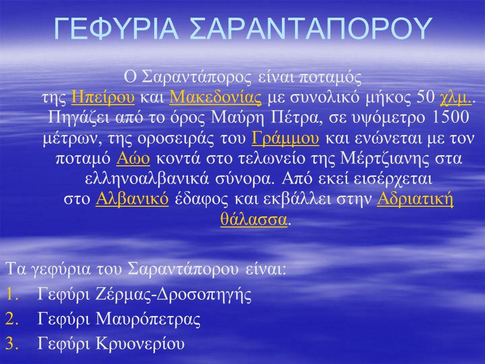 ΓΕΦΥΡΙΑ ΣΑΡΑΝΤΑΠΟΡΟΥ Ο Σαραντάπορος είναι ποταμός της Ηπείρου και Μακεδονίας με συνολικό μήκος 50 χλμ.. Πηγάζει από το όρος Μαύρη Πέτρα, σε υψόμετρο 1
